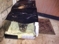cat outer simple shelter (14)