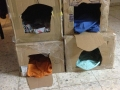 cat outer simple shelter (7)