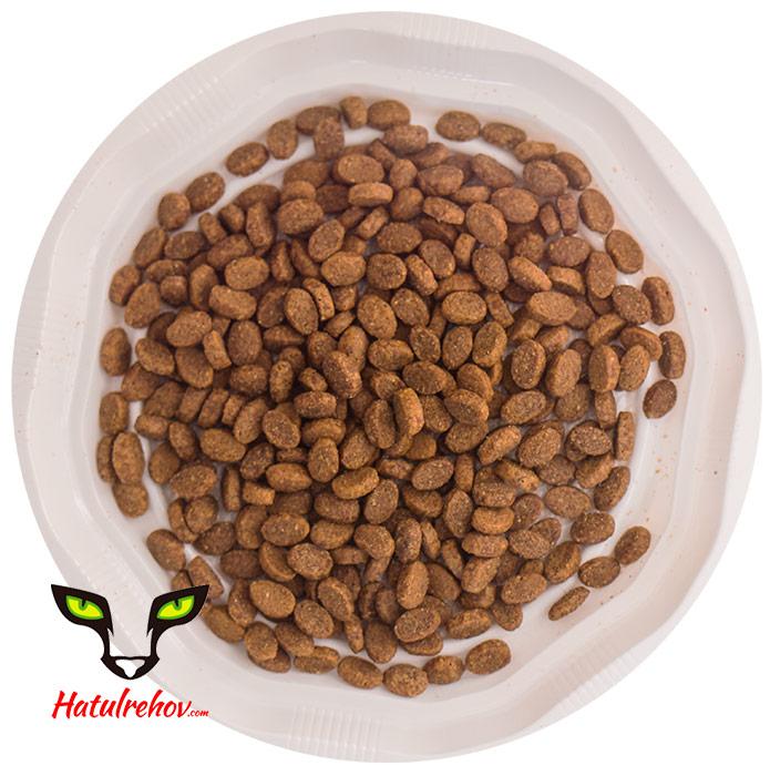 מזון יבש מלא לחתולים