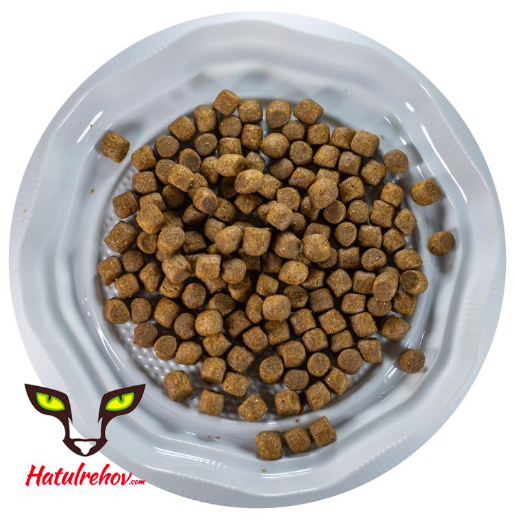 רפלקס אנשובי מזון לחתולים