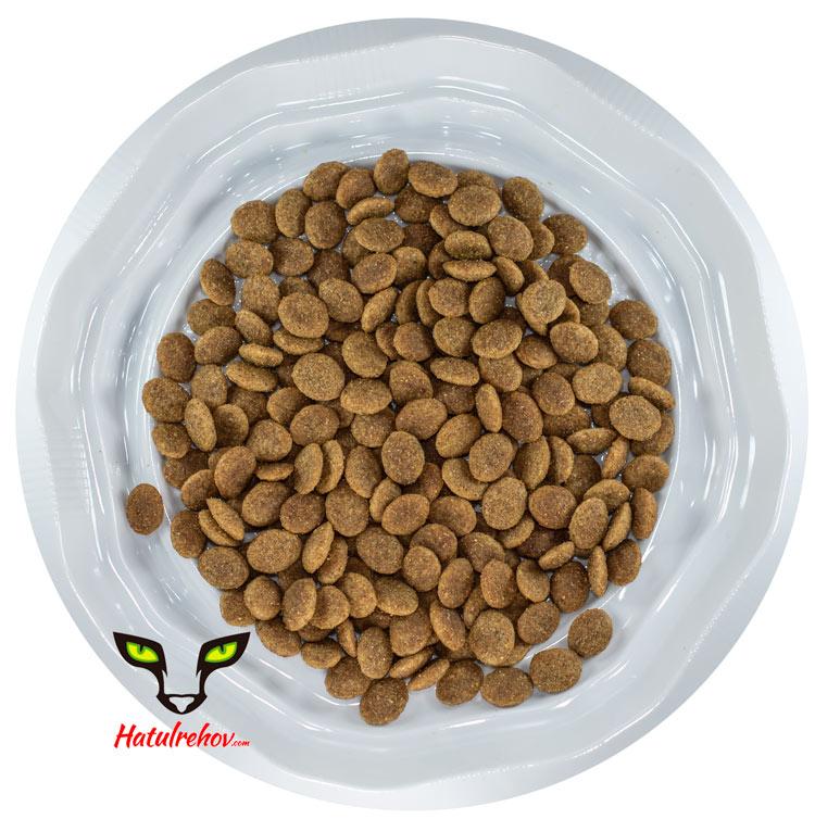 אראטון מזון לחתולים