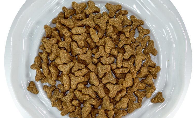 מזון לחתולים ג'וסיקט